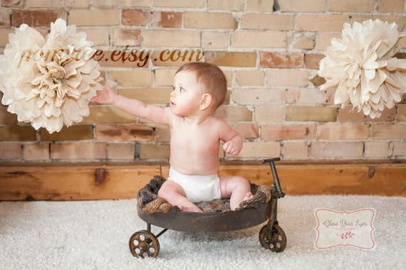 Rustic Shabby Photoshoot Decor 2 Poms Cake Smash Nursery