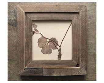 Strawberry ..|.. Leaves Framed in Reclaimed Pine