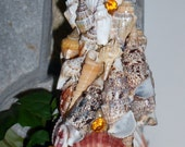 Handmade sea shell Christmas tree SALE