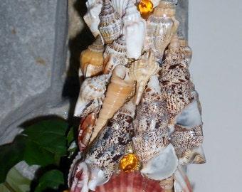 Handmade sea shell Christmas tree SALE