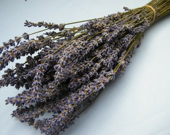 French dried lavender bunch from Provence