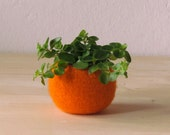 Free Shipping - Felt succulent planter / felted bowl / Succulent pod / pumpkin orange / festive decor
