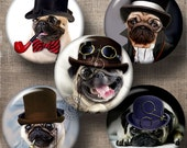 """Steampunk Pug Dog - 1.629"""" and 1.313"""" circles - Printable Digital Collage Sheets CG-785B for Pocket Mirrors, Buttons, Scrapbooking, Crafts"""
