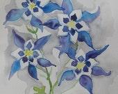 Coumbine watercolor, Original watercolor painting columbines, blue flower painting