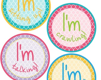 ADD ON My First Stickers for Baby, My First Stickers  - Quatrefoil -  Baby My First Stickers -Baby Shower Gift - Baby