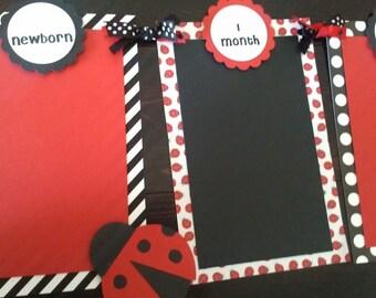 Baby's 1st Year Photo Banner, Ladybug birthday, ladybug photo banner, monthly photo banner, red & black banner