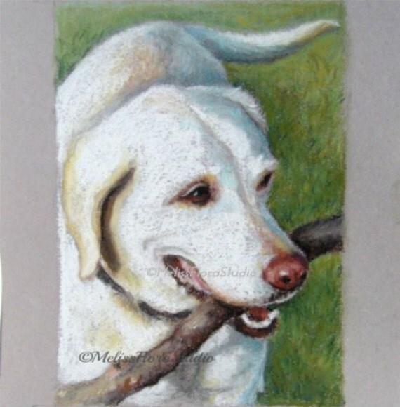 """Custom Pet Portrait - Fine Art Pastel Drawing 8"""" x 10"""" - Unique Gift For Pet Lovers"""