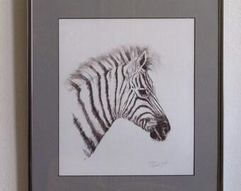 Zebra Drawing, Vintage Laura C Jordan Zebra Drawing, Framed Wall Art