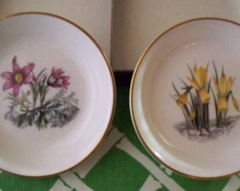 Royal Worcester Porcelain Made In England Gift Set of 2 Condiment Dish Floral Dish Set In Original Box Worcester England Fine Bone China