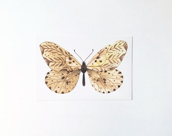 Butterfly No.5 - postcard