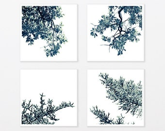 """Tree Photography Black and White Print Set - tree branch for trendy man up to 40x40"""""""