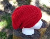 Slouchy Hat Men Women Teens Crochet Slouchy Holly Red Hat Beanie Skullcap