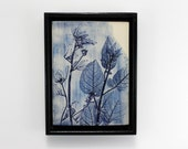 ON SALE | Botanical Art | Plant imprint onto stoneware clay | Blue ceramic tile | Original framed artwork | Wildlife inspired
