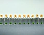 SALE! 10 Super Miniature Marimo Ball Bottles, Mini Garden, Mini Terrariums, Marimo Ball Mini Charms, Miniature Decor, Live Plant Bottles
