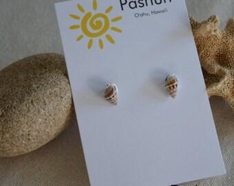Seashell Jewelry … Tan and White Shell Stud Earrings (1029)