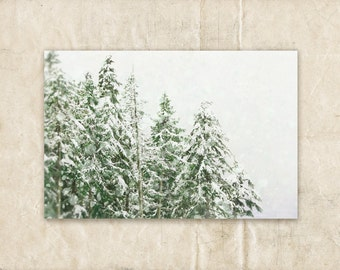 Green and White Art, Christmas Photography, Ski Wall Decor, Winter Picture, 5x7 Artwork, Tree Photograph, Snow Photo, Forest Art Print