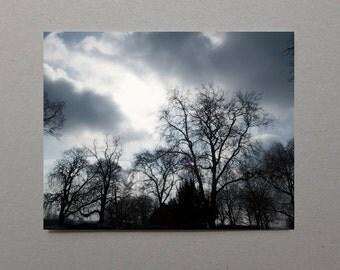 Silhouette Trees Photography, Man Decor, Wall Art Print, Sky Photography, Dark Cloud, Storm Photography, Dramatic Photography, Masculine Art