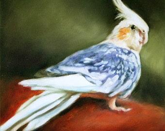 Art, Oil Painting, Bird Painting, Pet Portrait, Portrait Commission, Animal Portrait, 6x6