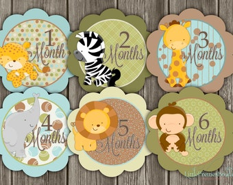 On Sale! Jungle Animals  Twelve Monthly Clothing Stickers