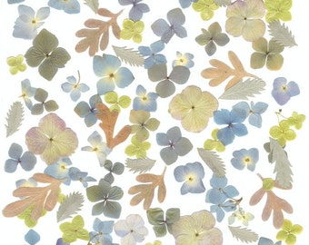 Wedding Table shades of Soft Blues, Greens and light Brown Real dried Pressed flowers and  leaves