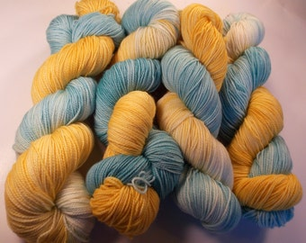 Lagoona on Max 80/20 SW Merino Nylon Hand dyed fingering weight sock yarn