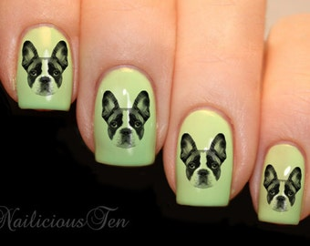 French Bulldog Design Nail Art Wraps Water Transfers 21pcs Decals ST8132