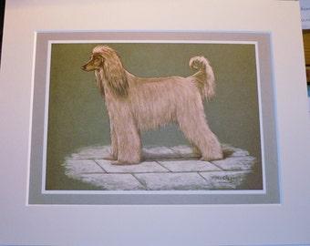 1968 AFGHAN HOUND Dog Vintage original Jacqueline des Clayes bookplate dog print Unique rare gift