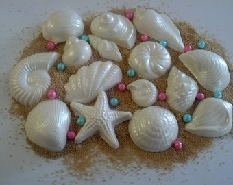 Chocolate Seashell Beach Cake Decorations 75 piece