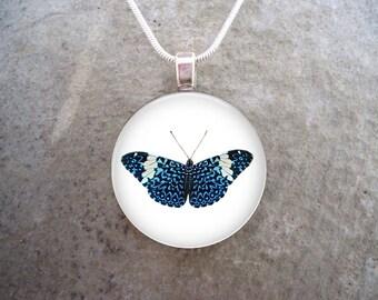 Butterfly Jewelry - Glass Pendant Necklace - Butterfly 16