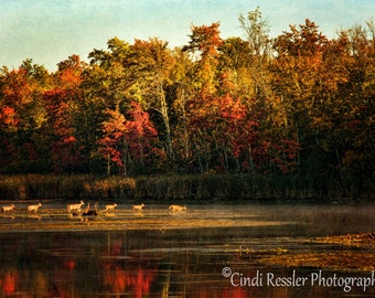 Crossing The Lake, Photography, Maine Photography, Landscape Photography