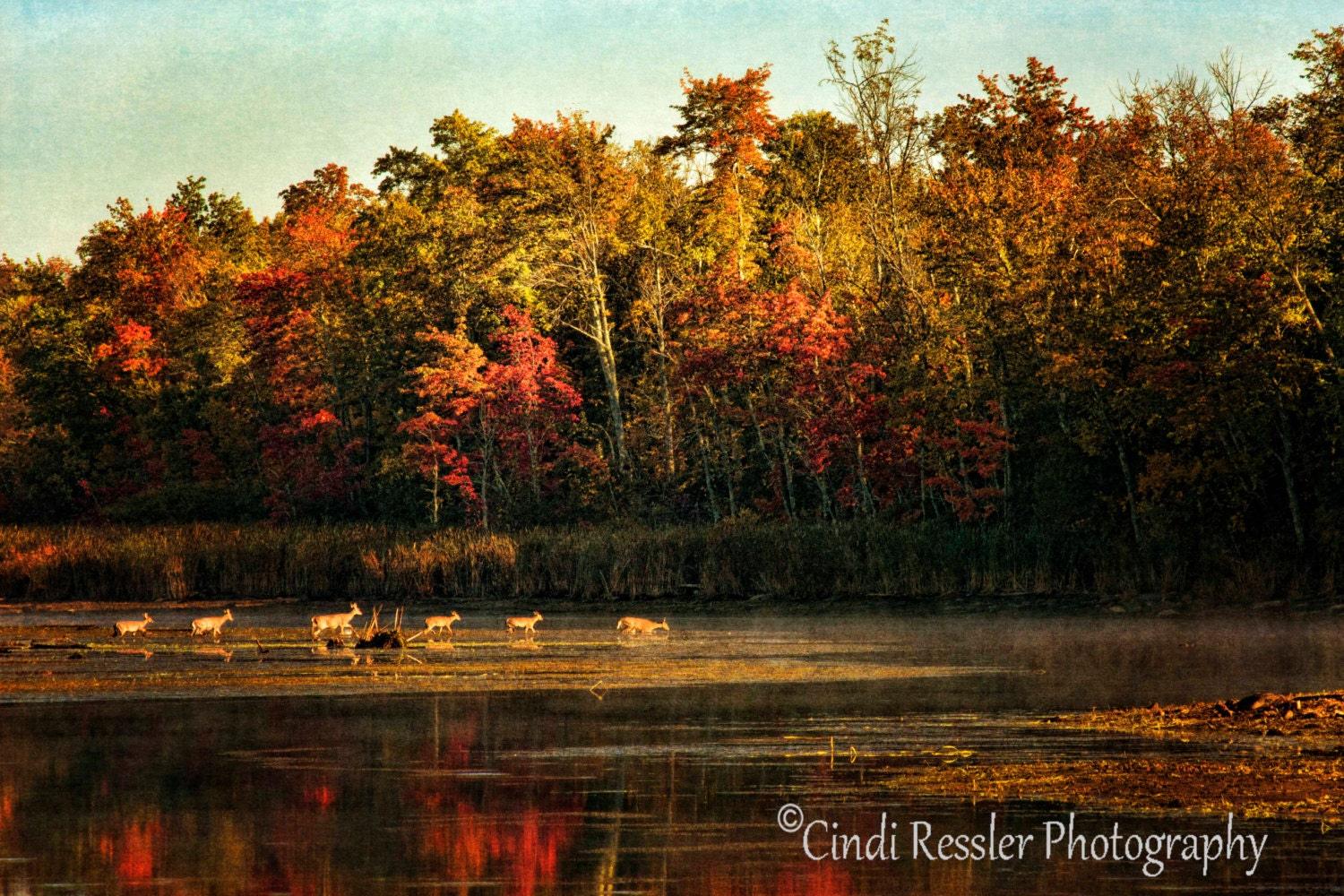 Dewi Jewelry Crossing The Lake Fine Art Photography Maine