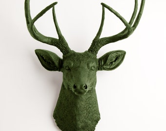 Faux Taxidermy Deer Head - The Basil - Olive Resin Stag Head- Olive Deer Antlers Mounted- Faux Head Wall Mount by White Faux Taxidermy