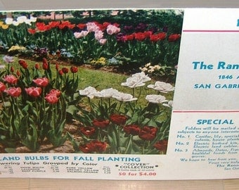 The Ransom Seed Co, 1949 Tulip Catalog, San Gabriel, California