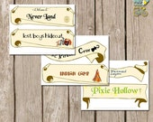 INSTANT download: Neverland Party SIGNS -  6 Neverland Signs ready to print - Printable PDF file