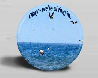 Pelicans2, Okay We're Diving In Photo Button Magnet 2.25 Inch Round