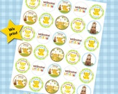 30 ct Lion King safari theme personalized stickers baby shower favor tags labels cupcake toppers decoration