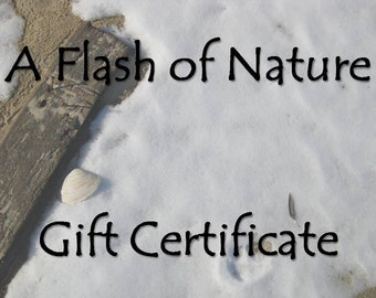 Gift Certificate for Nature Photography, 8x10 Photo, Unique iPhone Case, Gift Card, Housewarming, Geek Gift, Gift for Him, Gift for Mom