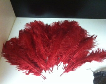 Ostrich Feathers Bulk Pricing 6 inches to 11 inches by weight.