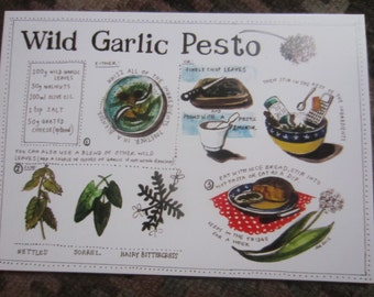 Wild Garlic illustrated recipe / greetings cards with envelope