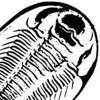 MollCutpurse