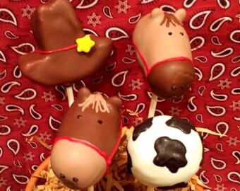 Cowboy / Cowgirl / Western Theme cake pops