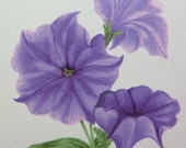 Purple Petunias Watercolor Painting Notecard