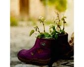 flowerpot - flower, wall art print, shoe, heart, photography, home decor, wall decor, 8x10 inch