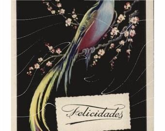 Vintage Post Cards – Felicidades – Flowing Dogwood Branch