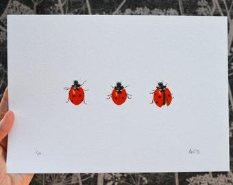 Ladybird print / picture. Art print of three ladybugs