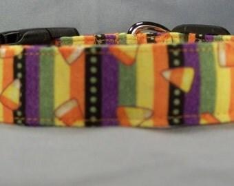 Candy Corn Stripe Halloween Dog Collar