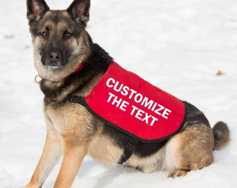 CUSTOMIZE Your Dog Jacket Vest - You Choose the Text