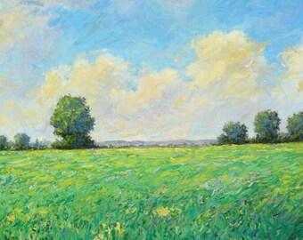Impressionist oil painting, original, flowers field peaceful, Italy, Sessa