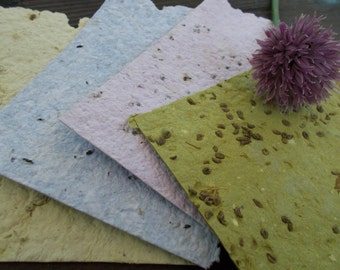 Handmade Plantable Paper with vintage envelopes herb garden herb seeds handmade paper plantables herb paper seed paper plantable invitation