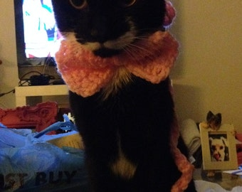 pink bow cat collar